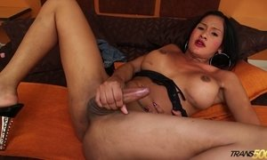 Sex-hungry exotic T-girl Brenda Camila is dildo fucking anal hole