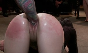 anal, ass lovers, bondage, brunette, domination, gangbang
